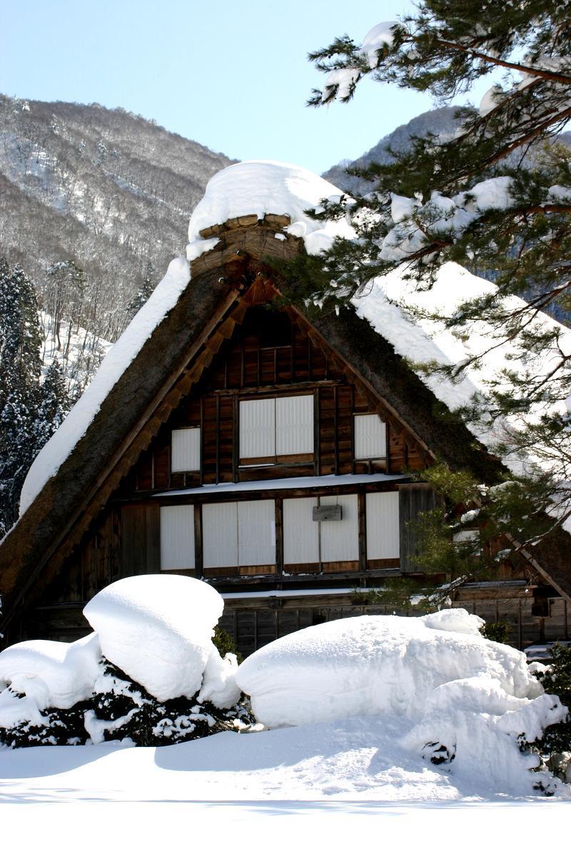ここは雪が無いと絵にならない白川郷 ①