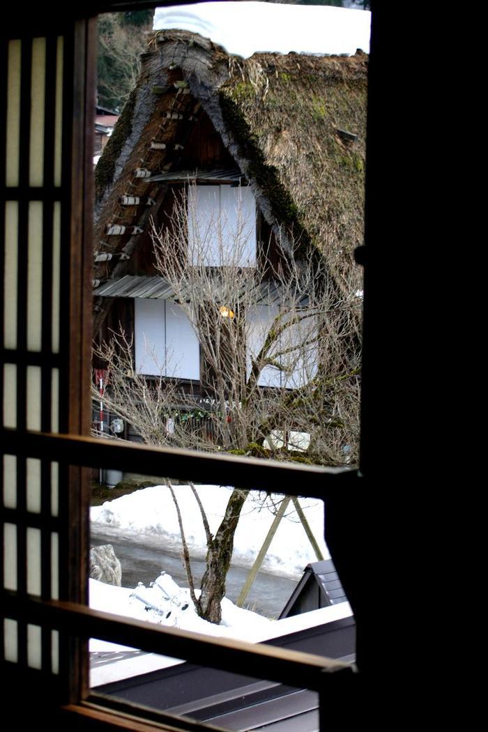 より幻想的な空間が演出される冬季限定のライトアップイベントは次回1月31日(土)&2月1日(日)開催 ①