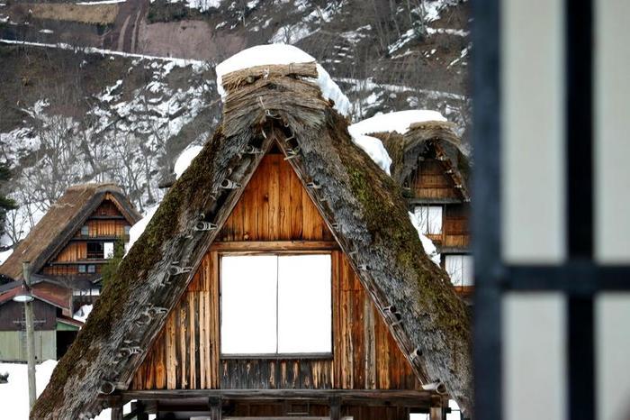 より幻想的な空間が演出される冬季限定のライトアップイベントは次回1月31日(土)&2月1日(日)開催 ②