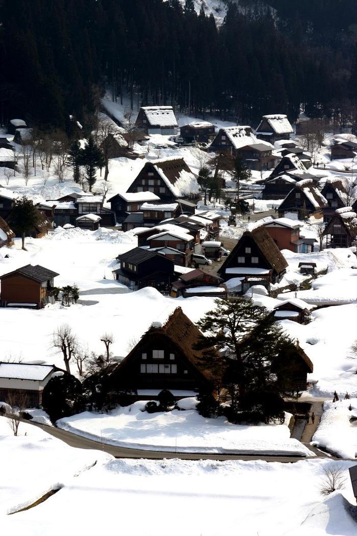 より幻想的な空間が演出される冬季限定のライトアップイベントは次回1月31日(土)&2月1日(日)開催 ③