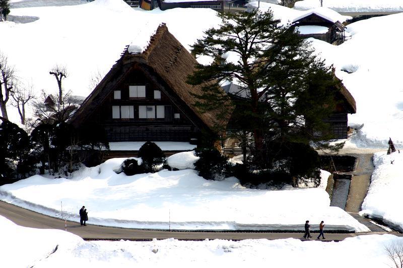 より幻想的な空間が演出される冬季限定のライトアップイベントは次回1月31日(土)&2月1日(日)開催 ④