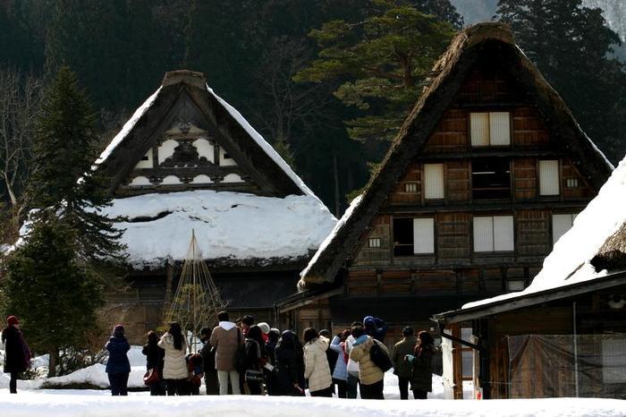 より幻想的な空間が演出される冬季限定のライトアップイベントは次回1月31日(土)&2月1日(日)開催 ⑤