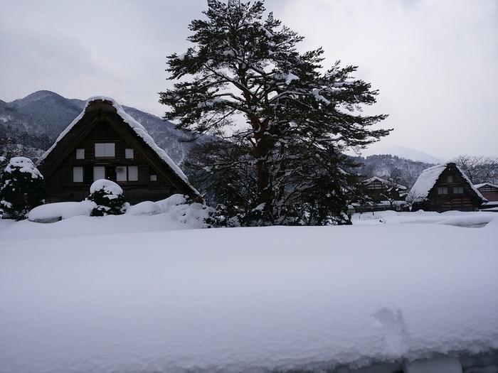 まだまだ雪景色を満喫できる白川郷にも、春の足音がゆっくりと近づいているはず。。⑤
