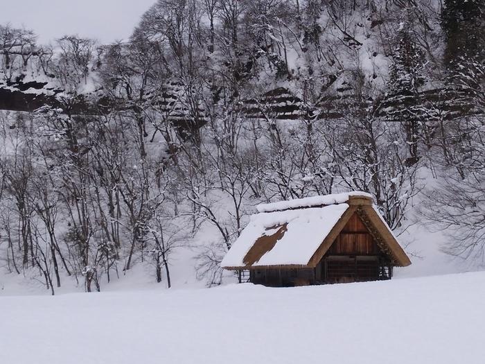 まだまだ寒い日が続いている今日この頃…!白川郷 ①