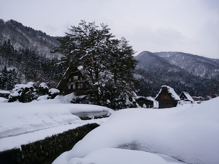 まだまだ寒い日が続いている今日この頃…!白川郷 ②