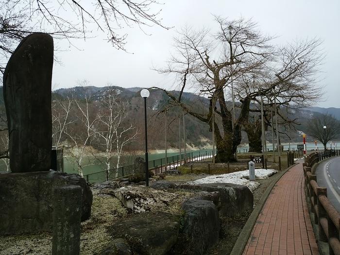 ゴールデンウィークはこれから咲く荘川桜と新緑の白川郷を観光しょう ①