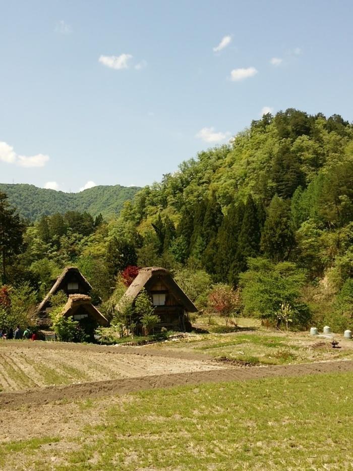 新緑初夏の白川郷を観光 ③