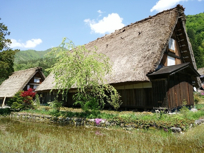 新緑初夏の白川郷を観光 ⑥
