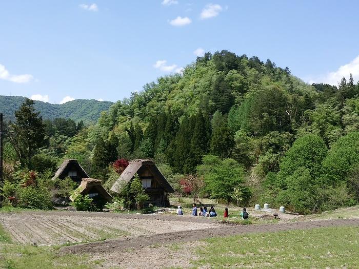 初夏の涼しい白川郷では合掌集落内のお散歩や白川村周遊、展望台の眺めなど気持ちのいい季節 ④