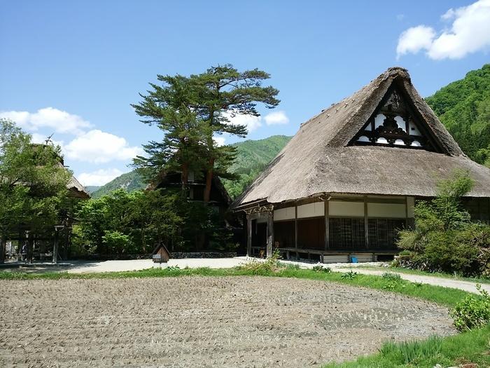 初夏の涼しい白川郷では合掌集落内のお散歩や白川村周遊、展望台の眺めなど気持ちのいい季節 ⑥