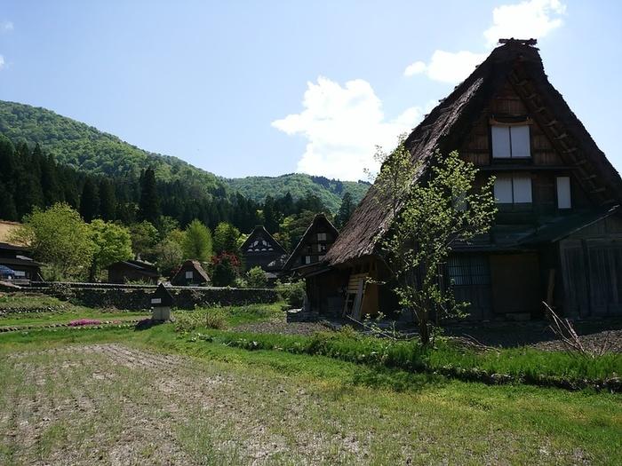 初夏の涼しい白川郷では合掌集落内のお散歩や白川村周遊、展望台の眺めなど気持ちのいい季節 ⑦
