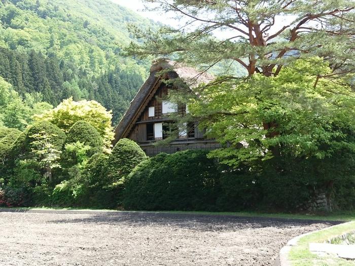 初夏の涼しい白川郷では合掌集落内のお散歩や白川村周遊、展望台の眺めなど気持ちのいい季節 ⑨