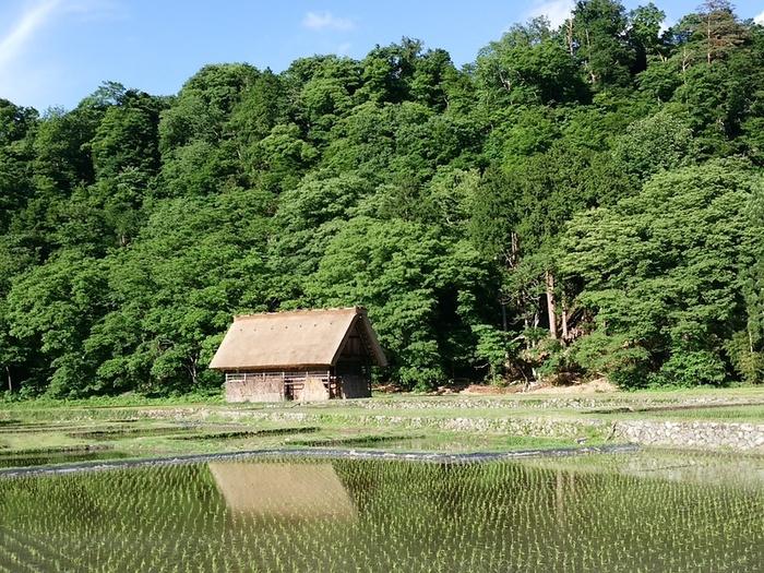 雨季でも風情があって楽しめる白川郷 ⑦