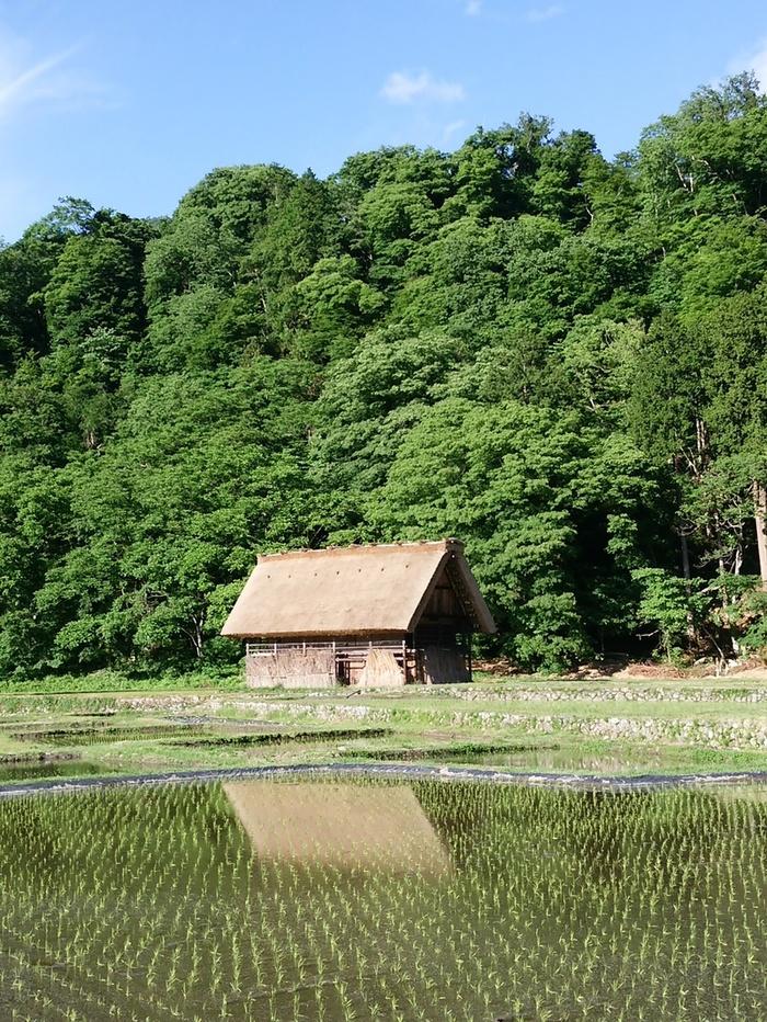 想像を遥かに超える幻想的な風景を楽しむなら,世界遺産 白川郷 ⑥