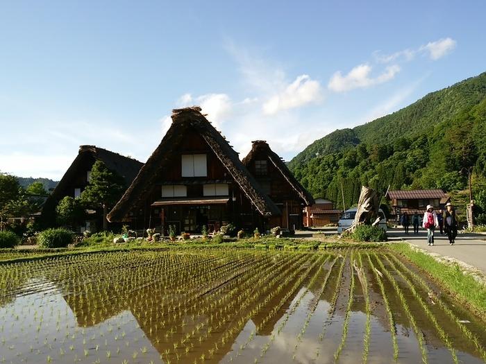 本格的な夏が来る前に白川郷へ行こう!! ③