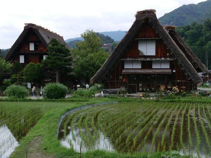 白川郷の旅 わいわい楽しんで、梅雨のジメジメを吹き飛ばしちゃいましょう!  ④