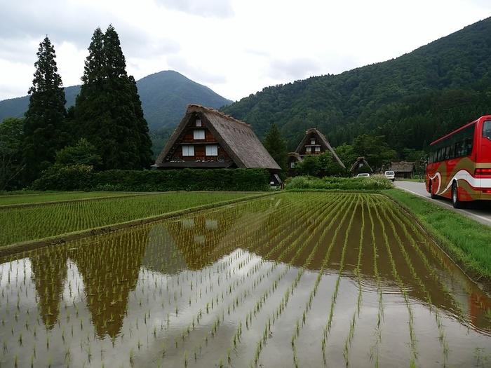 白川郷の旅 わいわい楽しんで、梅雨のジメジメを吹き飛ばしちゃいましょう!  ⑧