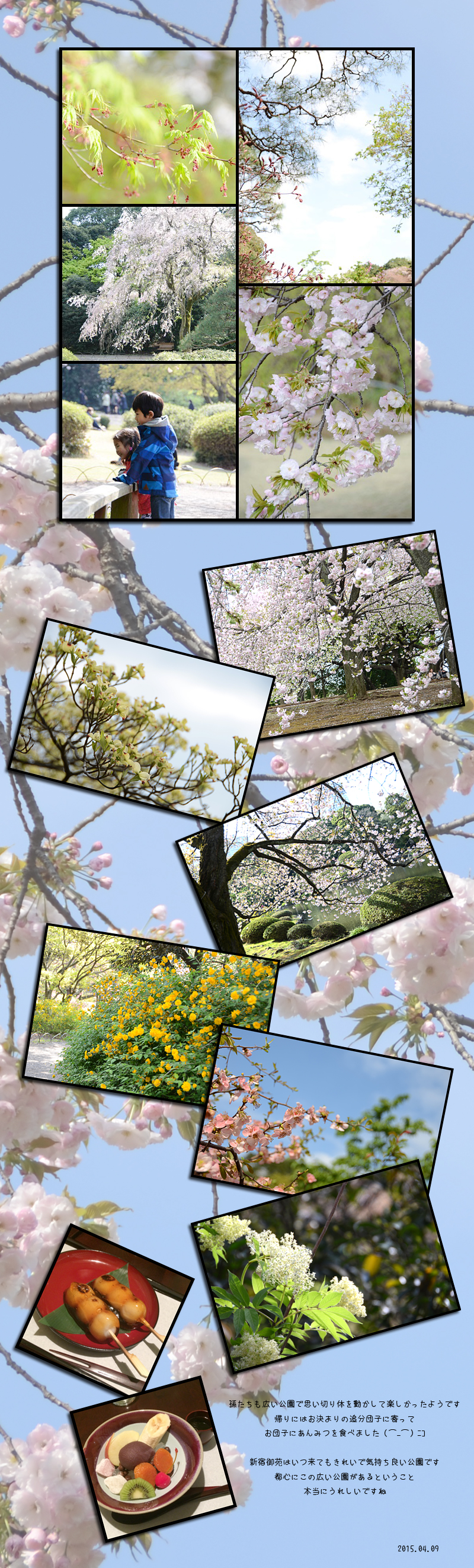 4月18日新宿御苑2