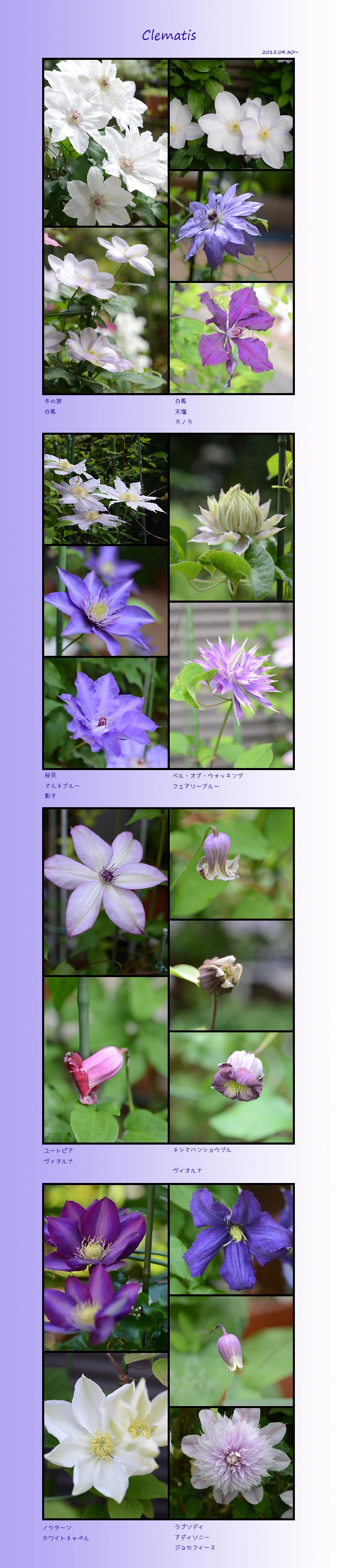 6月1日 5月の花1