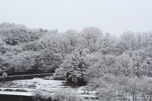 2015-2-18-2.jpg