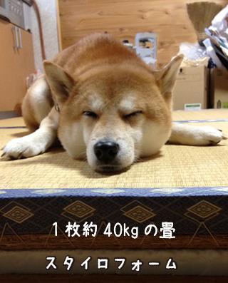 0220_2.jpg