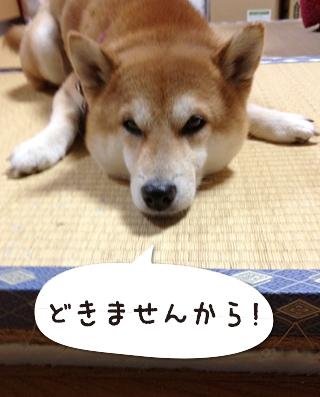 0220_3.jpg