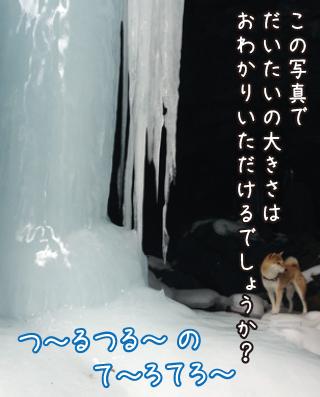 0224_88.jpg