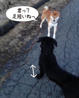 0305_22.jpg