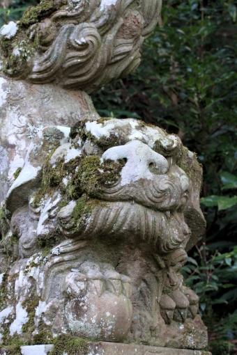 富能加神社の狛犬さん