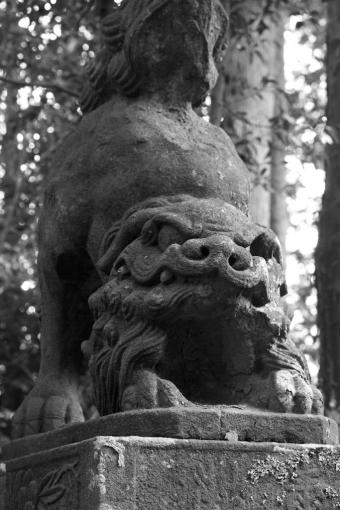 能義神社の狛ワンコ