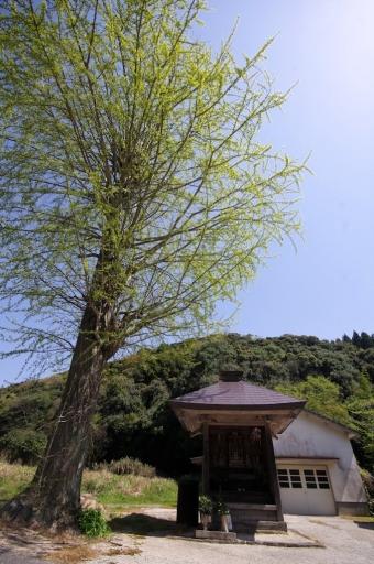 成相寺の観音堂