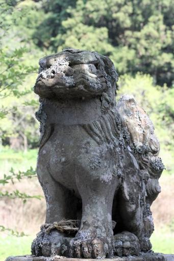現役の狛ワンコ