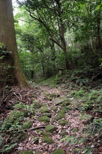 岩屋寺の滝へ向かう道