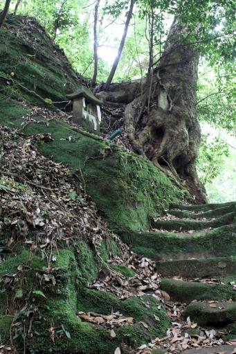岩屋寺の岩窟へ続く道