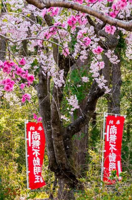 201040426龍願寺03