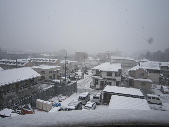 150130 雪01