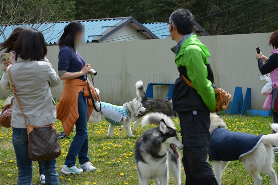 150414 犬山12