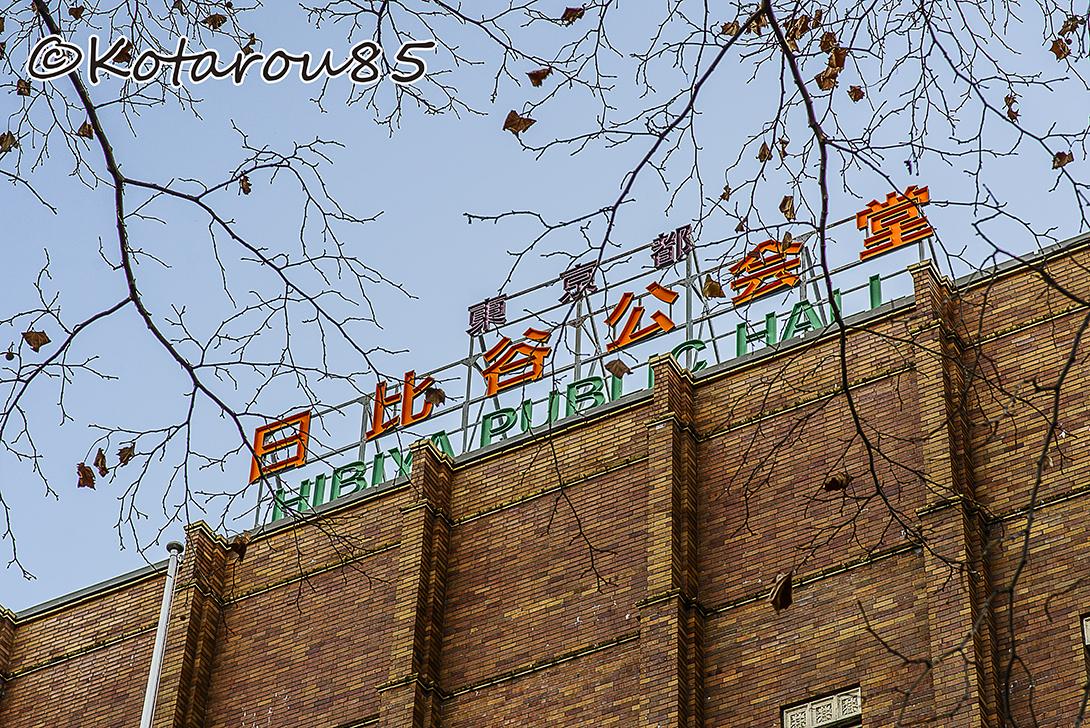 日比谷公会堂冬景色 20141224