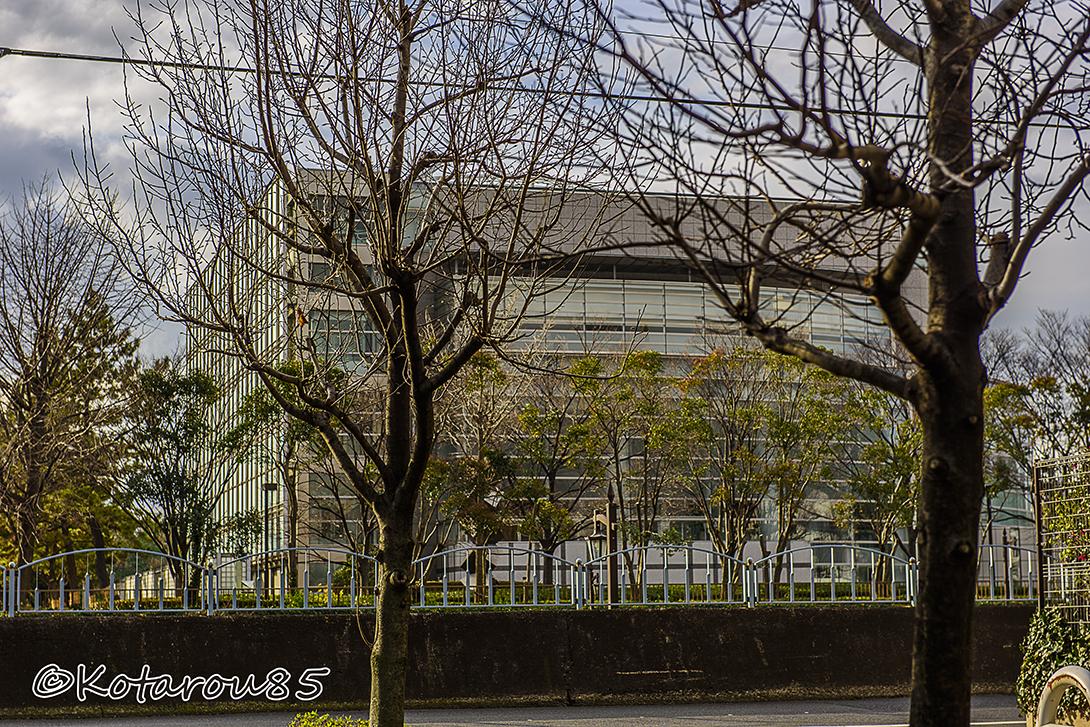 ティアラ江東 江東公民館 20150117