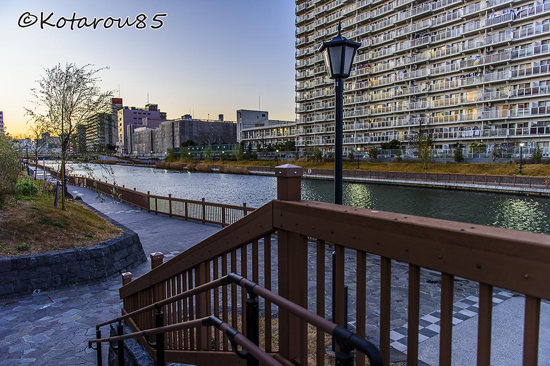 冬の小名木川 20150124
