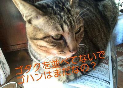 20150313080025993.jpg