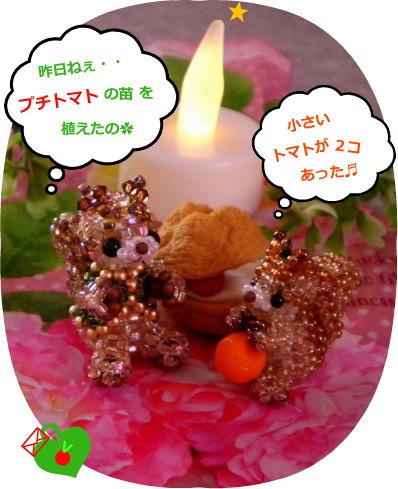 花ブ20150604-1