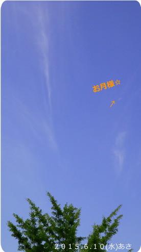 花ブ20150610-2