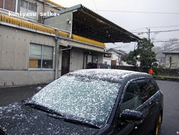 雪の日の選果場
