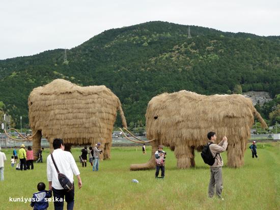 れんげ祭り1