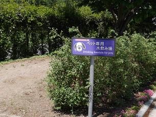 大谷PA4 (3)-2