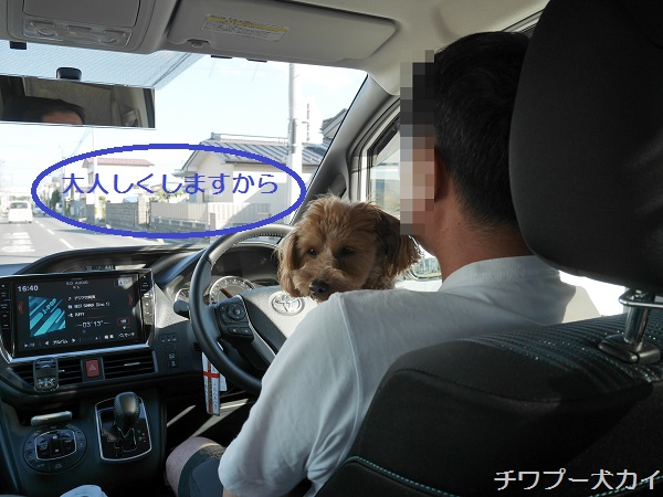運転席LOVE (3)
