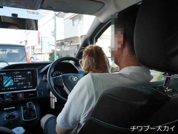 運転席LOVE (5)