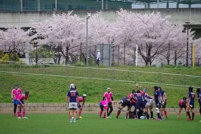 桜と桜色のジャージ