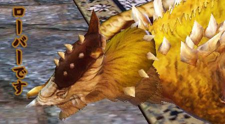 DragonsProphet-478